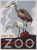WPA - Visit the zoo - Herons