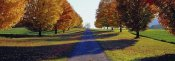 Richard Berenholtz - Autumn Road, Storm King Mountain, New York
