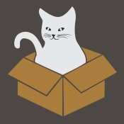 BG.Studio - Cat in a Box - Gray