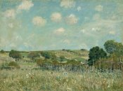Alfred Sisely - Meadow, 1875
