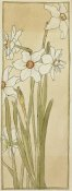 Hannah Borger Overbeck - Poet's Narcissus