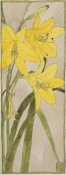 Hannah Borger Overbeck - Yellow Daylily