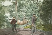 Detroit Publishing Co. - Hunting, Adirondacks, N.Y., 1898