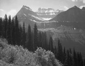 Ansel Adams - Trees, Bushes and Mountains, Glacier National Park, Montana - National Parks and Monuments, 1941