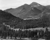 Ansel Adams - View with trees in foreground, barren mountains in background,  in Rocky Mountain National Park, Colorado, ca. 1941-1942