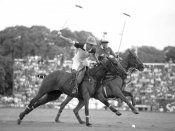 Anonymous - Polo players, Argentina