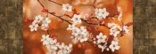 Jenny Thomlinson - Orange Sakura