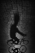 Antonio Grambone - Shadow Bike