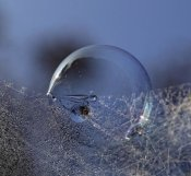 Kent Mathiesen - Blue Bubble Morning