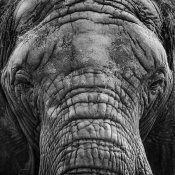 Giovanni Casini - 0|0