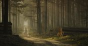 Jan Paul Kraaij - A Forest Walk