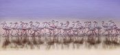 Ahmed Thabet - Comrades In Color