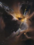 NASA - A Newborn Star Shoots Twin Jets Out Into Space