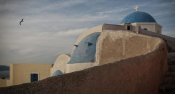 Vito Guarino - Lonely seagull flying in the Oia sky