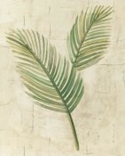 Albena Hristova - Sago Palm Leaves Neutral Crop