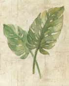 Albena Hristova - Monstera Leaves Neutral Crop