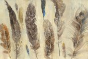 Albena Hristova - Feather Study