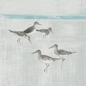 Avery Tillmon - Sandpipers Square I Gray