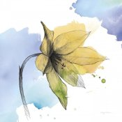 Avery Tillmon - Watercolor Graphitge Flower VIII