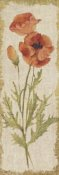 Cheri Blum - Poppy Panel on White Vintage