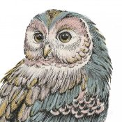 Daphne Brissonnet - Beautiful Owls I Pastel Crop