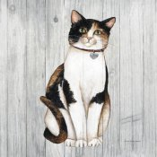 David Carter Brown - Country Kitty III on Wood