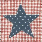 David Carter Brown - Americana Quilt II