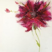 Jan Griggs - Pink Daisy on White