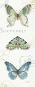 Lisa Audit - My Greenhouse Butterflies VI