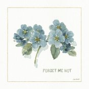 Lisa Audit - My Greenhouse Forget Me Not