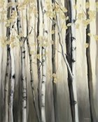 Marilyn Hageman - Golden Birch II