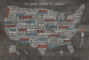 Michael Mullan - US City Map on Wood Gray