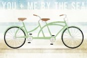 Michael Mullan - Beach Cruiser Tandem