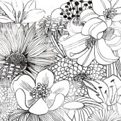 Michael Mullan - Contemporary Garden II Black and White