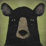 Ryan Fowler - The Black Bear