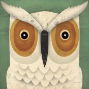 Ryan Fowler - White Owl