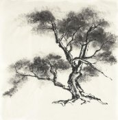 Chris Paschke - Sumi Tree II