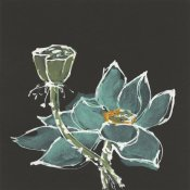 Chris Paschke - Lotus on Black I