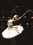 Richard Young - Prima Ballerina