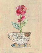 Courtney Prahl - Teacup Floral IV on Print