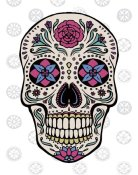 Janelle Penner - Sugar Skull I on Gray