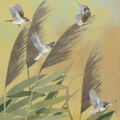 Kathrine Lovell - Sparrows and Phragmates Sq