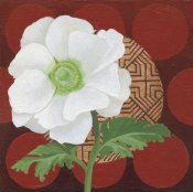Kathrine Lovell - Morning Anemone