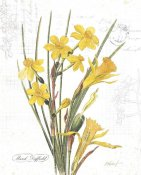 Katie Pertiet - March Daffodil on White