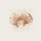 Katie Pertiet - Shell Collector IV