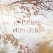 Laura Marshall - Autumn Calling I
