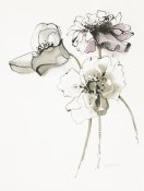 Shirley Novak - Three Somniferums Poppies Neutral