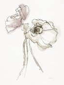Shirley Novak - Three Somniferums Poppies Neutral II
