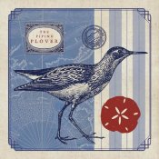 Studio Mousseau - Sea Bird I