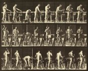 Eadweard J. Muybridge - Motion Study: Woodwork